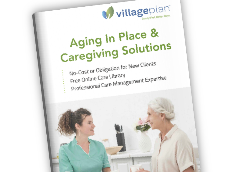 Aging in Place caregiving solutions - villageplan.